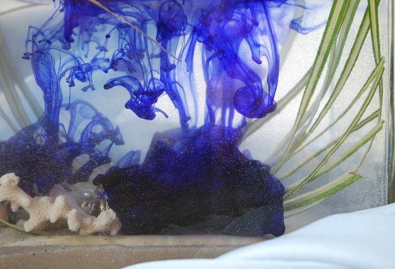Im Schatten der Tintenfische